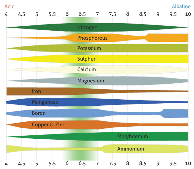 Soil testing and pH