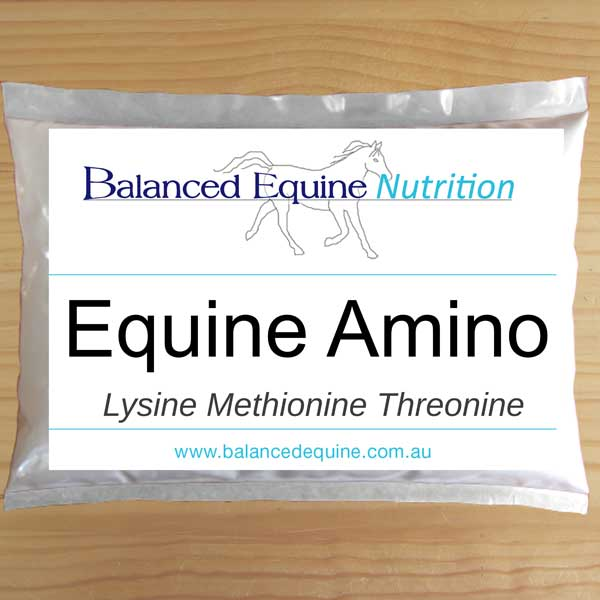 Equine Amino