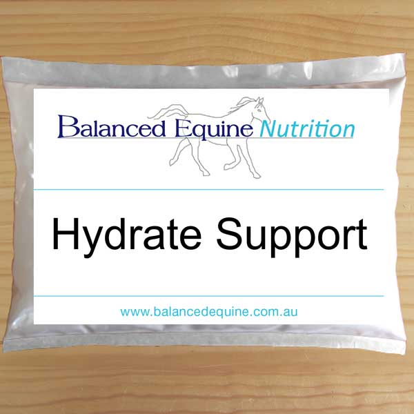 Hydrate Support